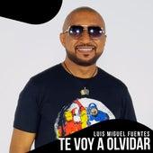 Te Voy a Olvidar de Luis Miguel Fuentes