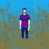I Should Go (Nic Fanciulli Remix) von James Vincent McMorrow