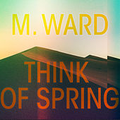 For Heaven's Sake by M. Ward