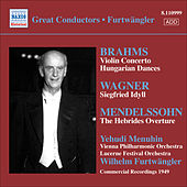 Brahms: Violin Concerto / Wagner: Siegfried Idyll by Various Artists