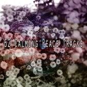 62 Calming Peace Tracks von Massage Therapy Music