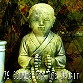 79 Sounds for the Spirit von Massage Therapy Music