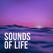 Sounds Of Life by Nature Sounds (1)
