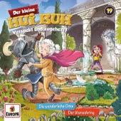 019/Die wunderliche Oma/Der Wunschring von Der kleine Hui Buh