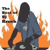 The Best of DJ Krush de Dj Krush