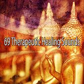 69 Therapeutic Healing Sounds von Yoga
