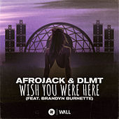 Wish You Were Here (feat. Brandyn Burnette) by Afrojack