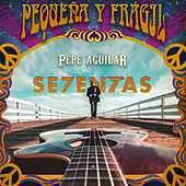 Pequeña y Frágil de Pepe Aguilar