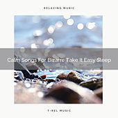 Calm Songs For Bizarre Take It Easy Sleep by White Noise Sleep Therapy