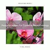 Peaceful Noises For Tuned-in Relax Evenings by White Noise Sleep Therapy