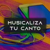 Musicaliza tu canto de Various Artists