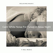 Calm White Noise For Tuned-in Relax Night by White Noise Sleep Therapy