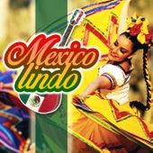 Mexico Lindo von Javier Solis