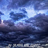 30 Calming Rain Sounds de Sleep Sounds of Nature