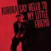 Say Hello to My Little Friend von Aurora