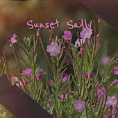 Sunset Sally de The Standells, Eartha Kitt, Johnnie Ray, The Chordettes, Brook Benton, Davy Jones, Ray Scott, Curtis Gordon, The Avons