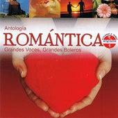 Antología Romántica Grandes Voces, Grandes Boleros Volume 1 by Various Artists