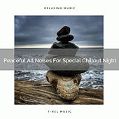 Peaceful All Noises For Special Chillout Night de White Noise Sleep Therapy
