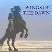 The Wings of the Dawn von Simon Khorolskiy