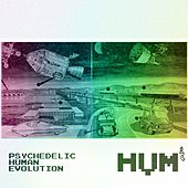 Psychedelic Human Evolution by Hum