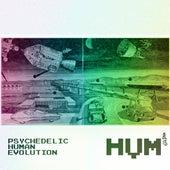 Psychedelic Human Evolution de Hum