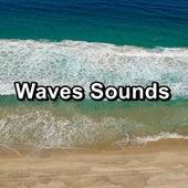 Waves Sounds von Sea Waves Sounds