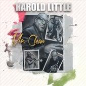 Mr. Clean by Harold Little
