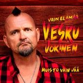 Muisto vain jää (Vain elämää kausi 11) by Vesku Jokinen