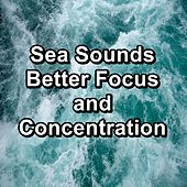 Sea Sounds Better Focus and Concentration von Meditation Relaxation Club