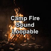 Camp Fire Sound Loopable by Spa Music (1)