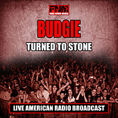 Turned To Stone (Live) by Budgie