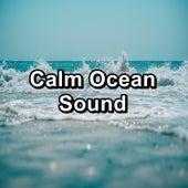 Calm Ocean Sound von Yoga Music