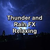 Thunder and Rain FX Relaxing de Rain Sounds and White Noise