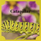 Catapillar by Morry Williams Va/Lafayette Yarborough