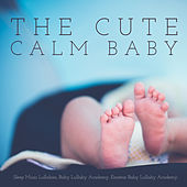 The Cute Calm Baby by Sleep Music Lullabies (1)