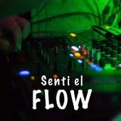 Sentí el Flow di Various Artists