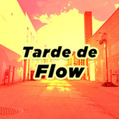 Tarde de Flow de Various Artists