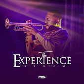 The Experience by MOGmusic