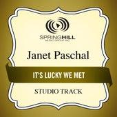 It's Lucky We Met de Janet Paschal