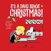 It's a David Benoit Christmas! by David Benoit