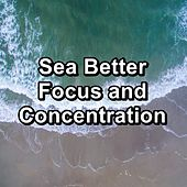 Sea Better Focus and Concentration von Delta Waves