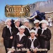 Toda la Vida Te Espere by Novillos Musical