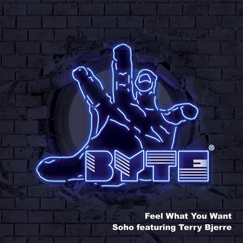 Feel What You Want by Soho