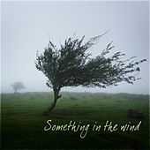 Something In the Wind by Various Artists