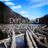 Driftwood Walkways de Various Artists