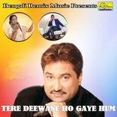 Tere Deewane Ho Gaye Hum de Various Artists
