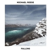 Falling by Michael Reese