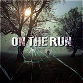 On the Run by Various Artists