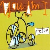 Trike von You Am I