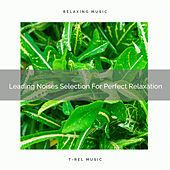 Leading Noises Selection For Perfect Relaxation de Water Sound Natural White Noise